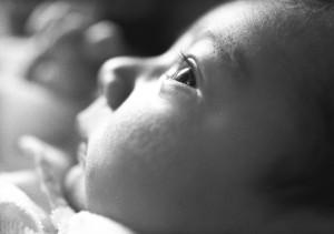 infant_macro_Lovelight_photo