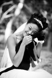 cat_bride_Lovelight_photo
