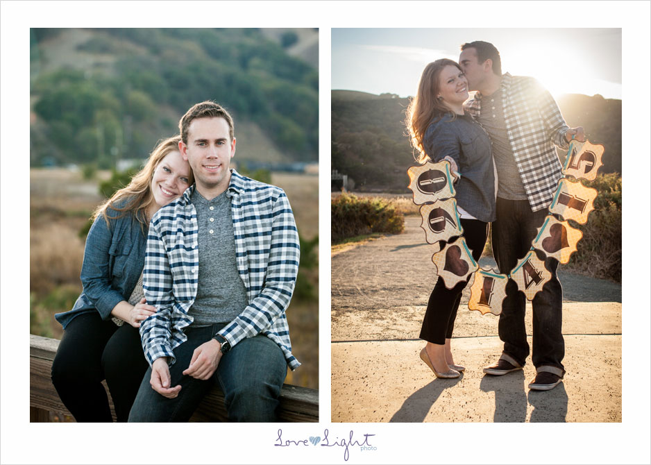 engagement photo banner