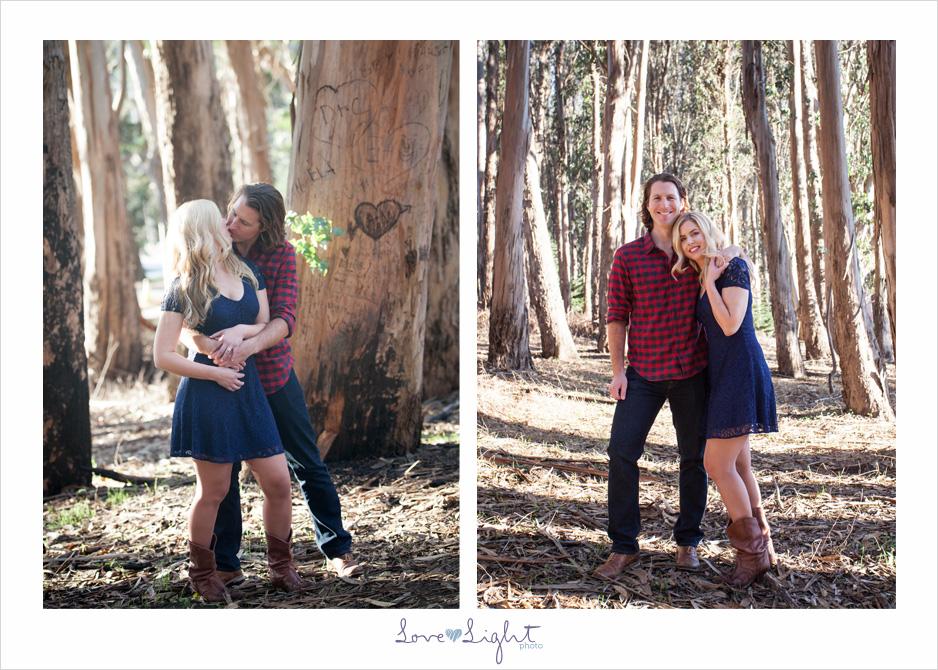 San francisco engagement shoot eucalyptus tree