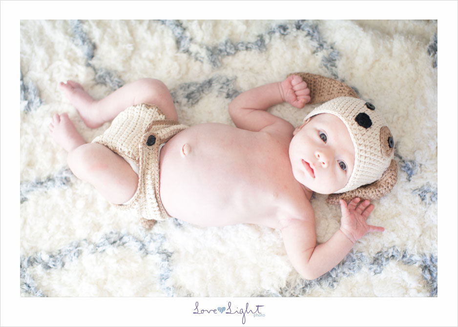 doggie hat baby boy Logan Newborn session