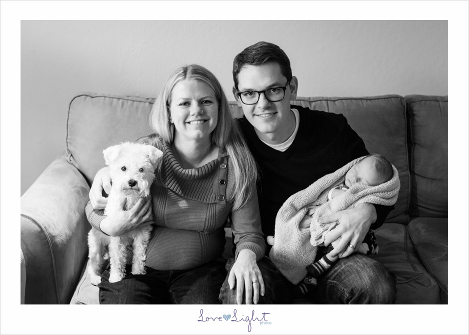 newborn dog family christmas