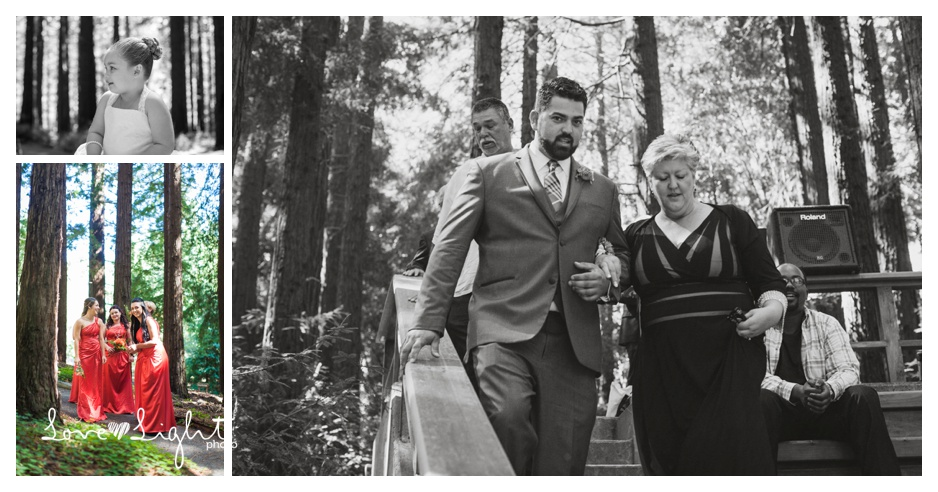 Berkeley Botanical Gardens Wedding