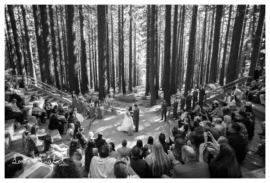 Berkeley Botanical Gardens Wedding